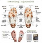KOYO KAKI DETOX Foot Patch Gold